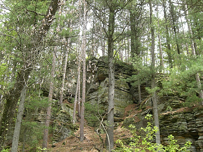 Rocky Arbor State Park A Wisconsin Park Located Near