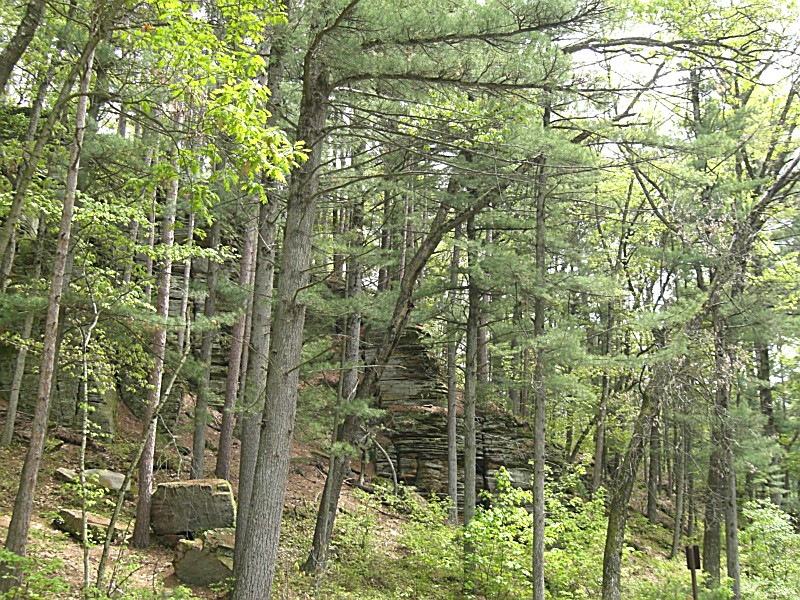 Rocky Arbor State Park A Wisconsin State Park Located