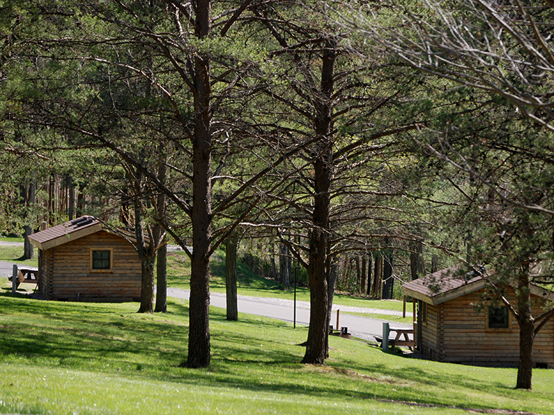 pa state parks that allow dogs in cabins