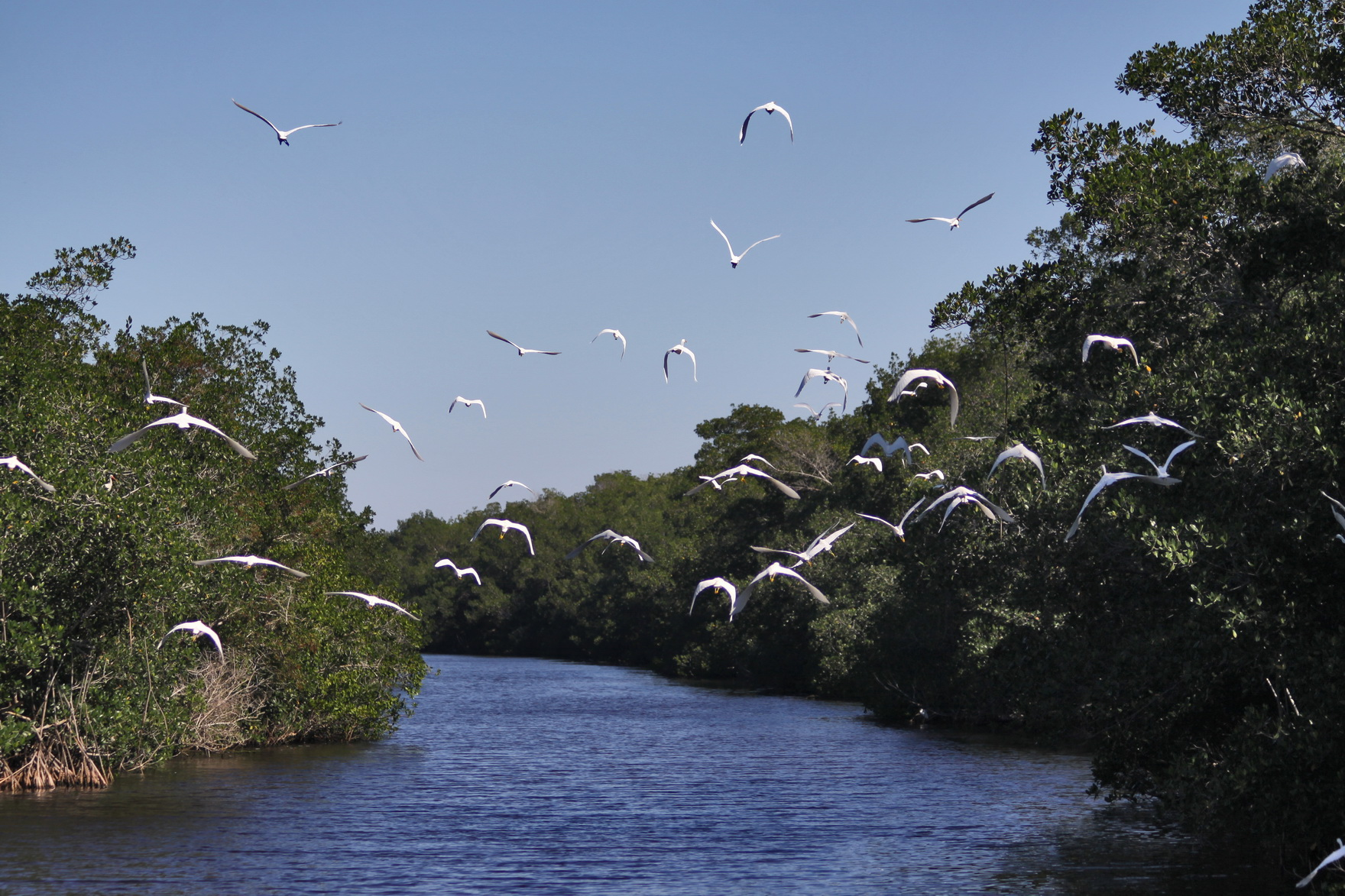 parks of the central region of florida