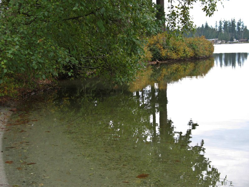 Camano Island State Park Camping Reservations
