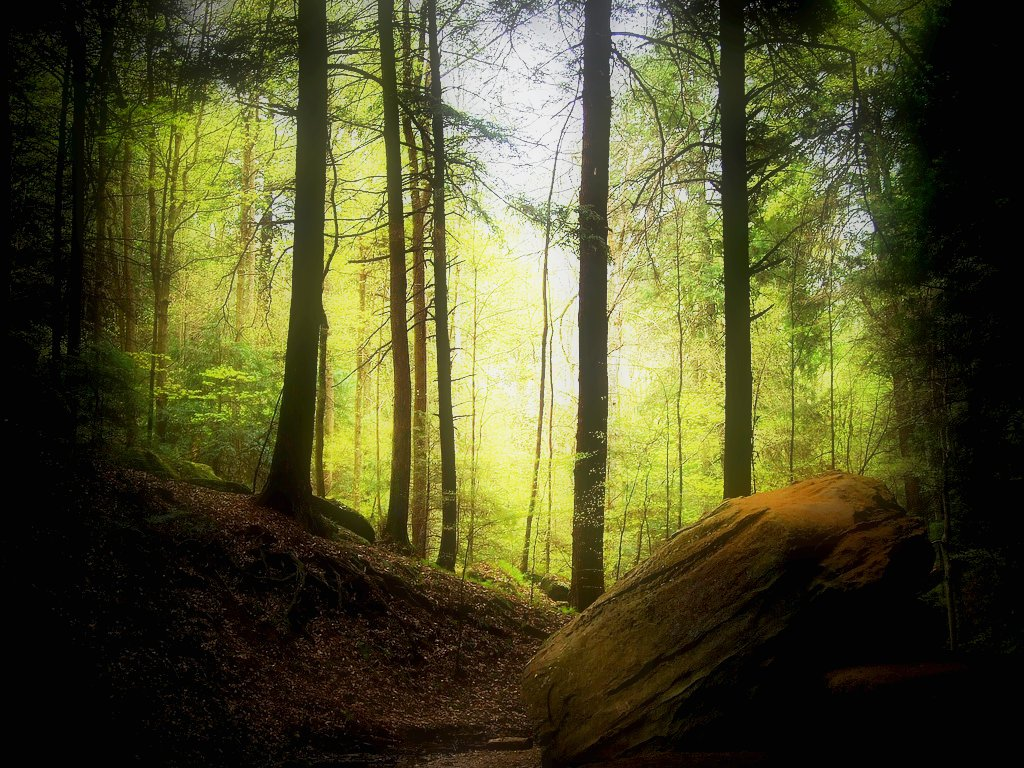 Hocking hills state park an ohio state park located near - Nature wallpaper collection zip ...