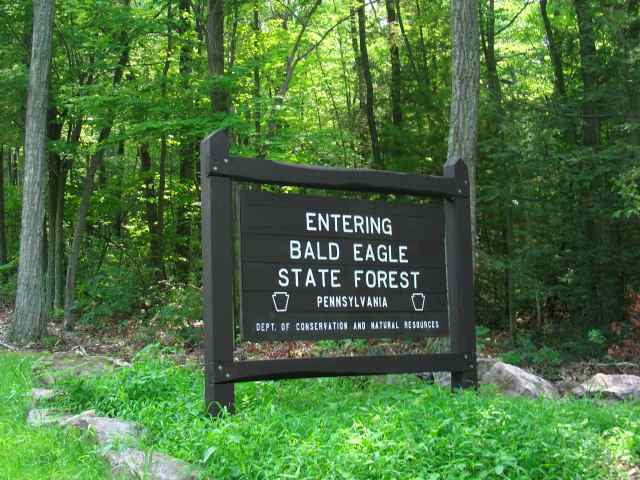 Bald Eagle State Forest A Pennsylvania Forest Located