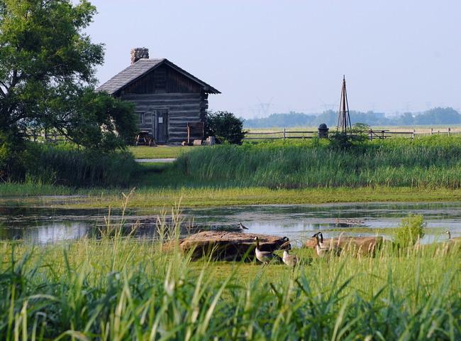 Goose Lake Prairie State Park C Pamela L Ridgley