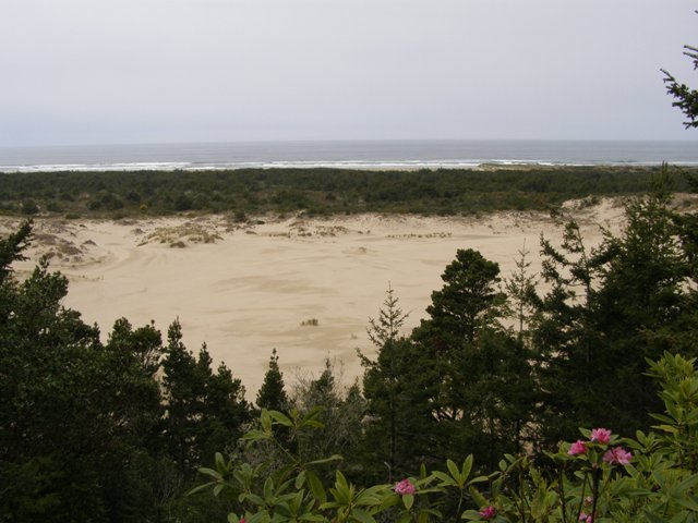 Oregon Sand Dunes National Park Florence Or Day Trip