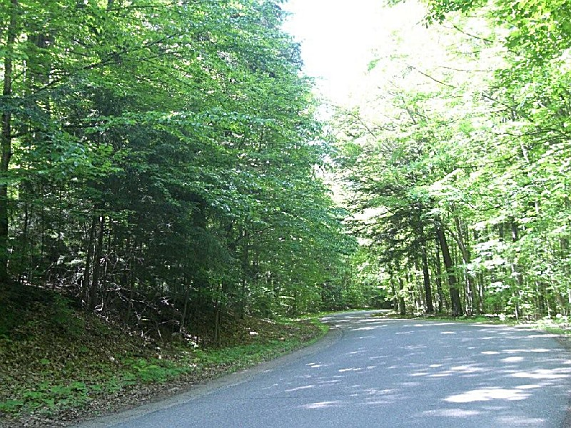 Nicolet National Forest, a Wisconsin natlforest
