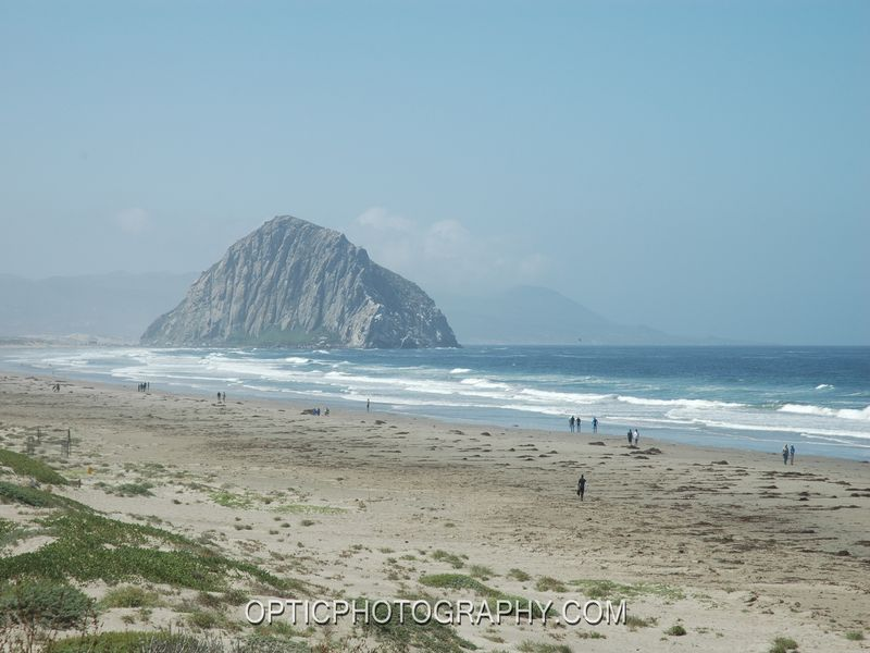 Morro Bay State Beach Reservations