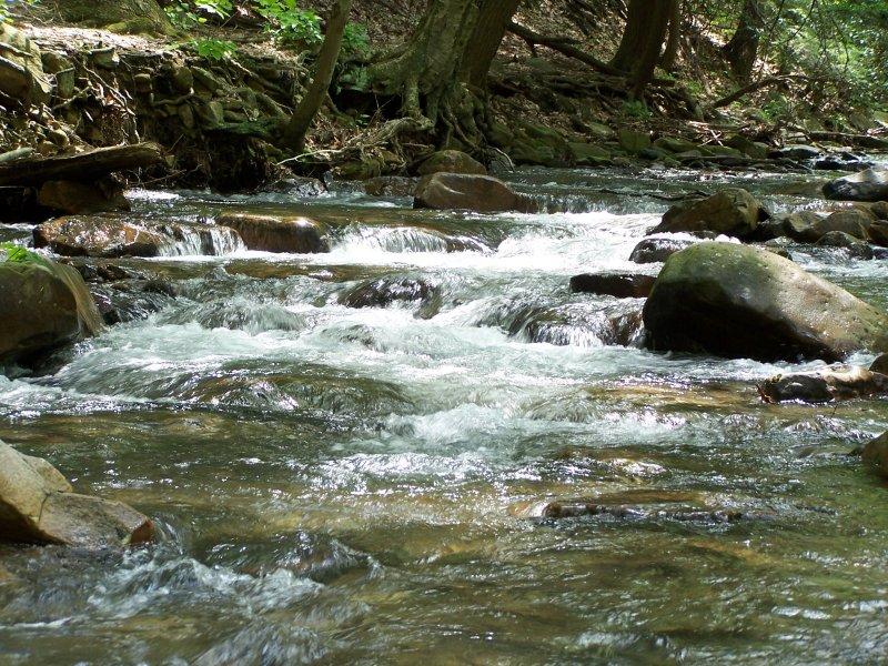 Linn Run State Park, A Pennsylvania Park Located Near Greensburg, Johnstown  And Latrobe