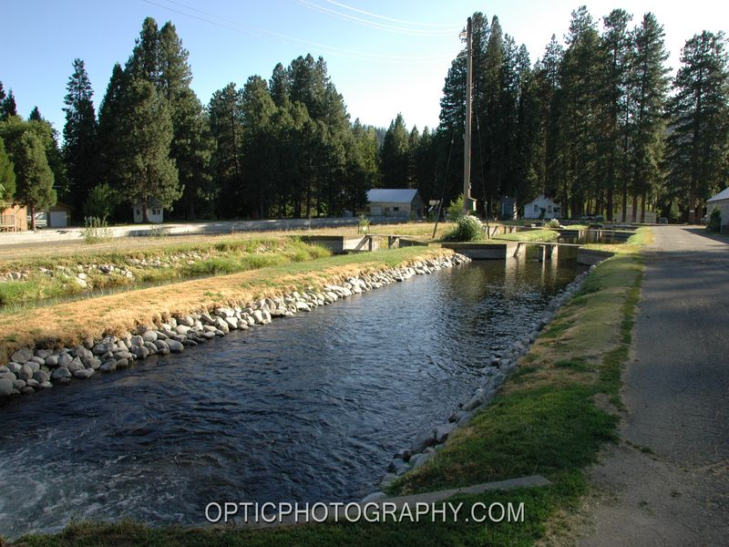 Mount shasta state fish hatchery a california hatchery for California fish hatcheries
