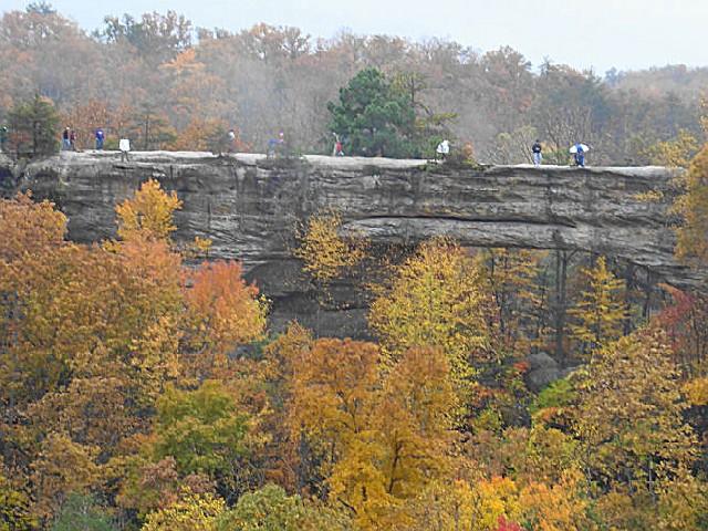 Natural Bridge State Park Mt