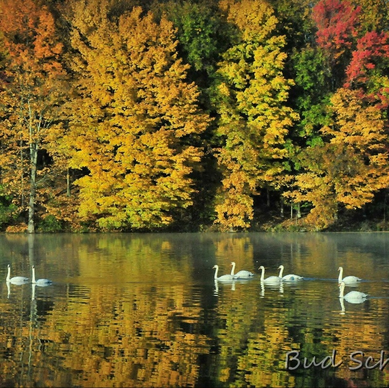 Lake Logan State Park Logan Ohio