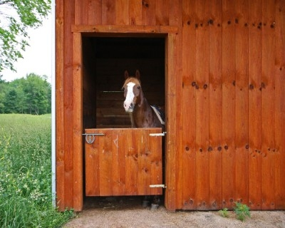 The Barn at Pumpkin Ridge - Beautiful stables that will accommodate up to 4 horses