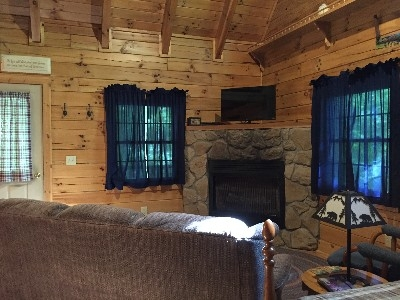Beechwood Cabin - Living room