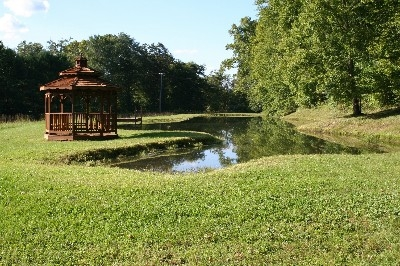 Pond/Gazebo - Bring your fishing poles.Lots of bass and bluegill awaiting your arrival.