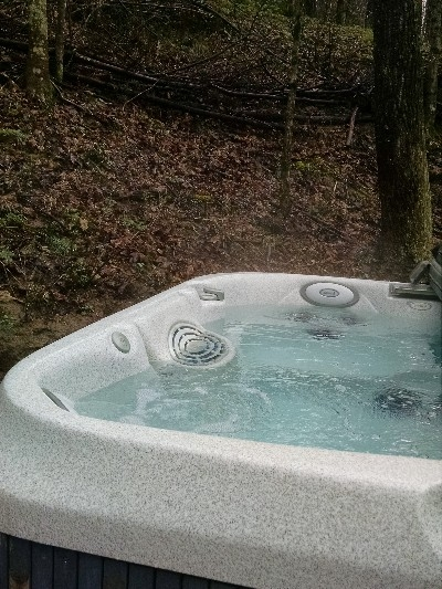 Locust Grove Lodge  Hot tub - Under the stars at night under the tree tops during the day.