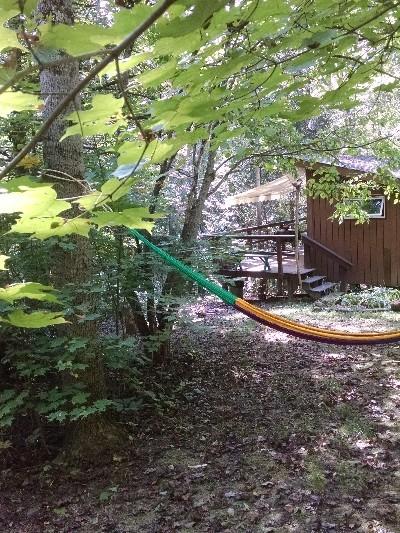 dogwood - put your feet up in a hamock