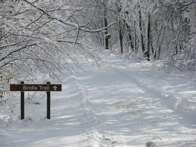 Trail Access - Both the Big Pine and Twin Oak cabins have walk-in access to the Strouds Run State Park bridle trails  The Scatter Ridge Retreat has walk-in access to the park
