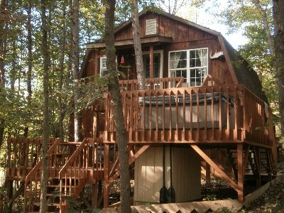 Rear View of The Tree House