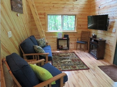 Maple View Tree House - Main room which has plenty of windows to see the views, a fireplace, tv and comfortable seating arrangement.