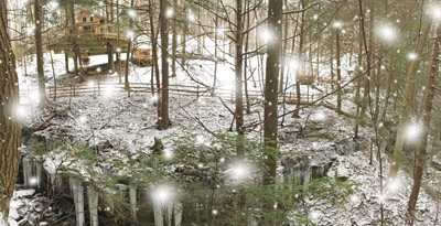 Snowscape at The Maple Treehouse - Enjoy the beauty of all 4 seasons at The Maple Treehouse  Hocking Hills Treehouse Cabins