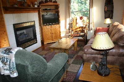 Freedon Living Room - Satellite TV. DVD, and Gas Log Fireplace make this a fun place to stay.