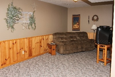 Downstairs living room - Additional living room is located downstairs with another bathroom.