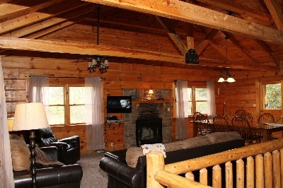 Living Room - Includes wood burning fireplace.
