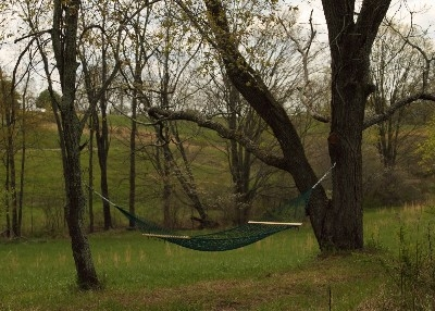 Peaceful Hammock  - Relax and read a book