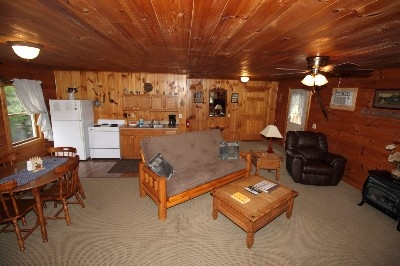 Large Living Space at Sky View Cabin - This living room id handicap accessible