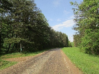 Our quiet township road - A gorgeous summer day in our rural location!  Cabin driveway entrance is on the left. This ridgetop road is about 1000 feet above sea level.