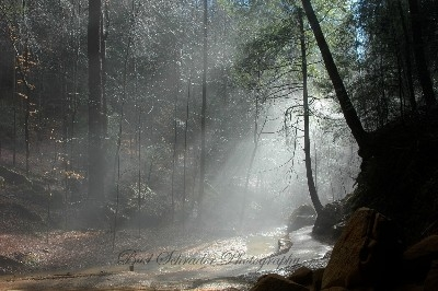 Ash Cave Misty Trail - Taken after heavy rain just before Christmas.