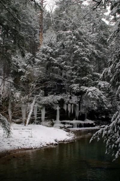 Stream at Cedar Falls