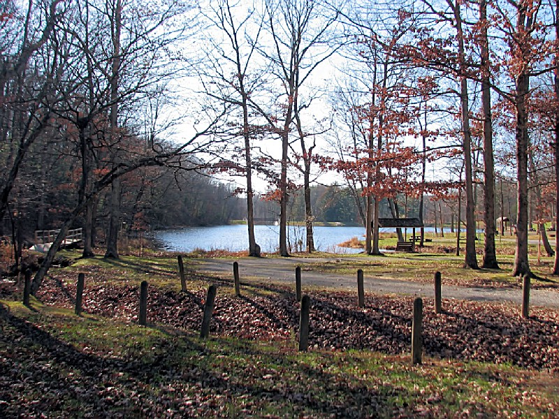 Jackson-Washington State Forest, an Indiana State Forest located