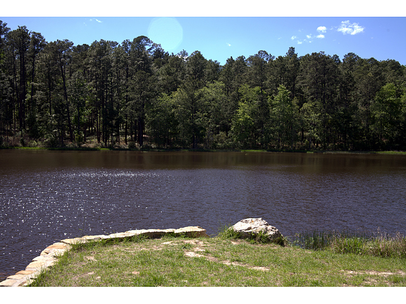 Angelina National Forest, a Texas natlforest located near ...