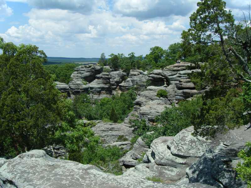 Shawnee National Forest An Illinois National Forest Located Near Harrisburg Marion