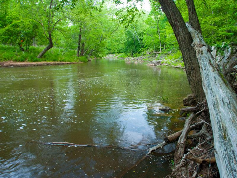 Eno River State Park, a North Carolina State Park located ...