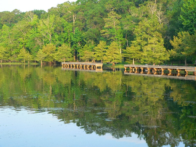 Lake d 39 39 arbonne state park a louisiana park located near for Fishing cabins in louisiana