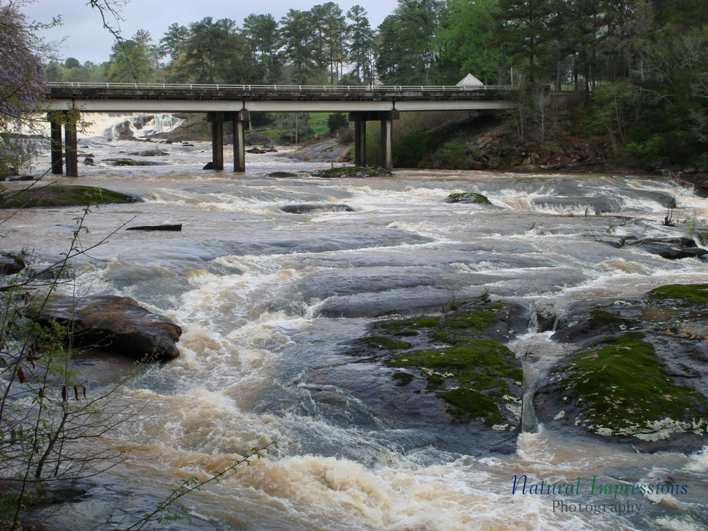 pine river hindu dating site Pines cottages offers riverfront cottages located on the indian river, part of the spectacular inland waterway between burt and mullet lakes.