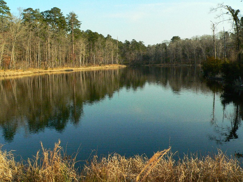 List Of Parks In Louisiana