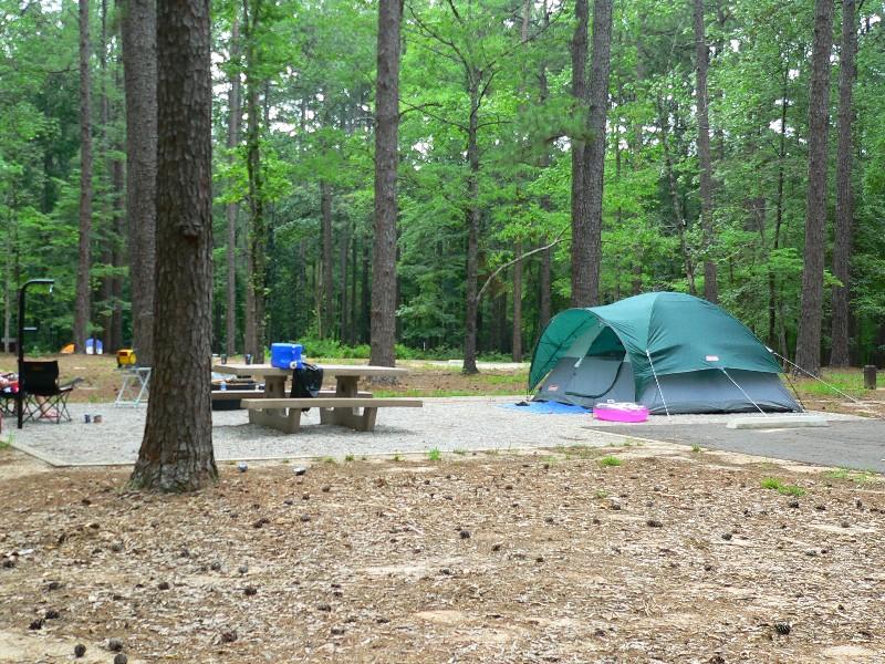 Jones Island State Park Camping