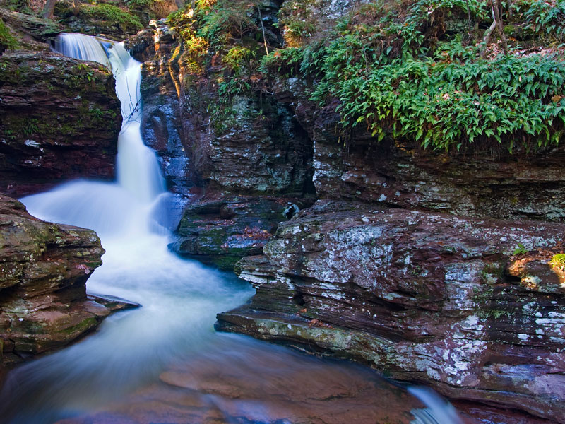 Ricketts Glen State Park, A Pennsylvania Park Located Near Berwick, Dallas  And Mountain Top
