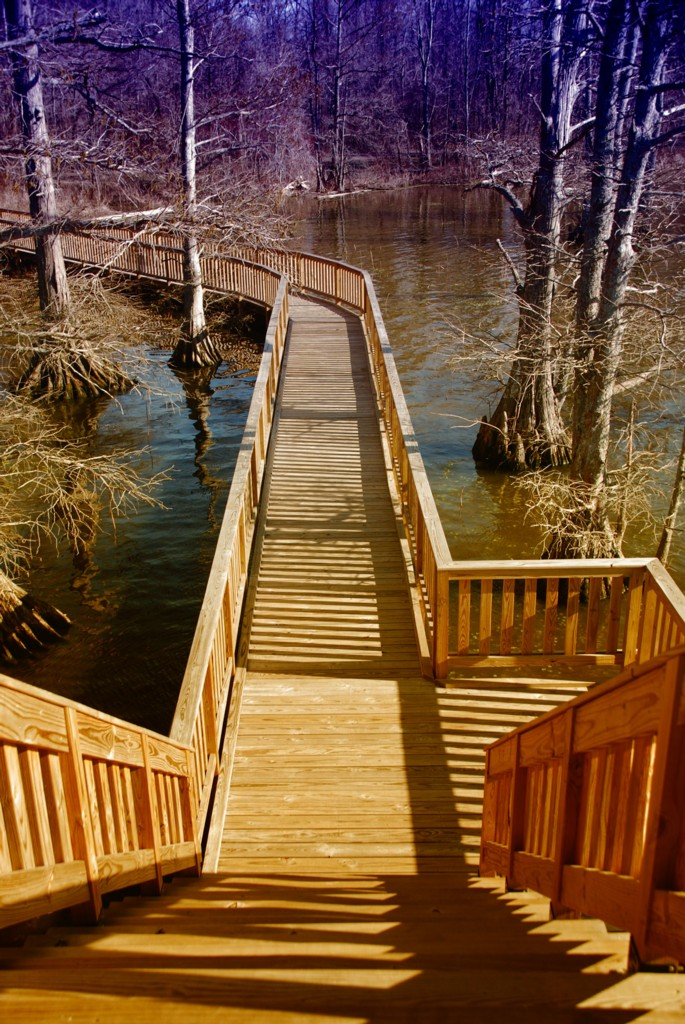 Reelfoot Lake State Park, a Tennessee State Park located near Union City