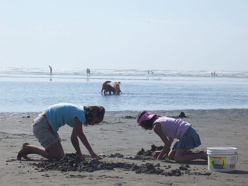Pacific Beach State Park Map - 49 2nd St Pacific Beach WA ... |Pacific Beach State Park