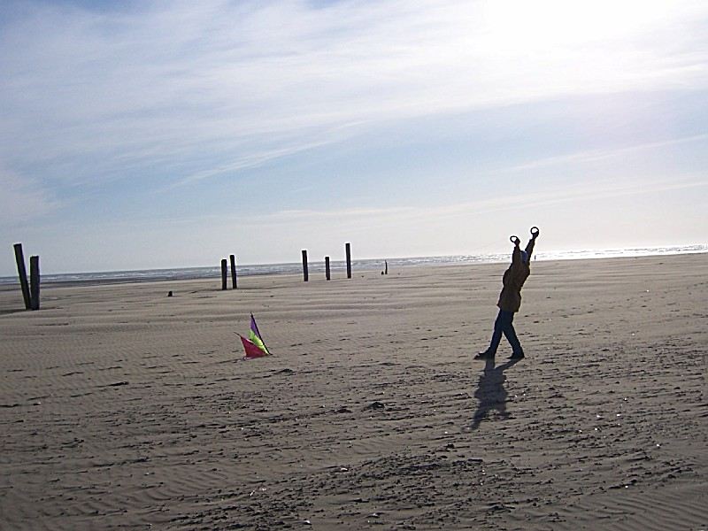 Pacific Beach State Park - 21 Photos - Parks - 49 2nd St ... |Pacific Beach State Park