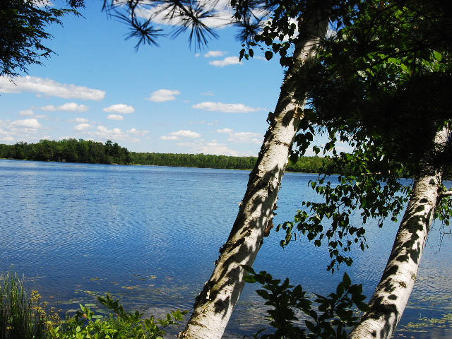 Flambeau River State Forest A Wisconsin State Forest