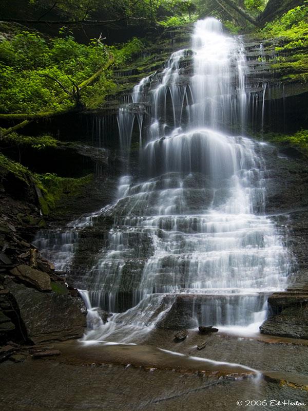 Leonard Harrison State Park a Pennsylvania