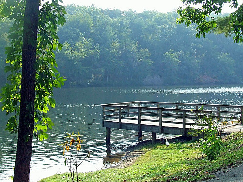 Cumberland Mountain State Park, A Tennessee Park Located Near Crossville,  Rockwood