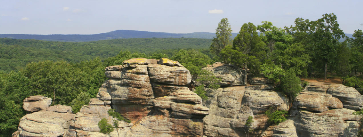 Shawnee National Forest, an Illinois natlforest located near ...