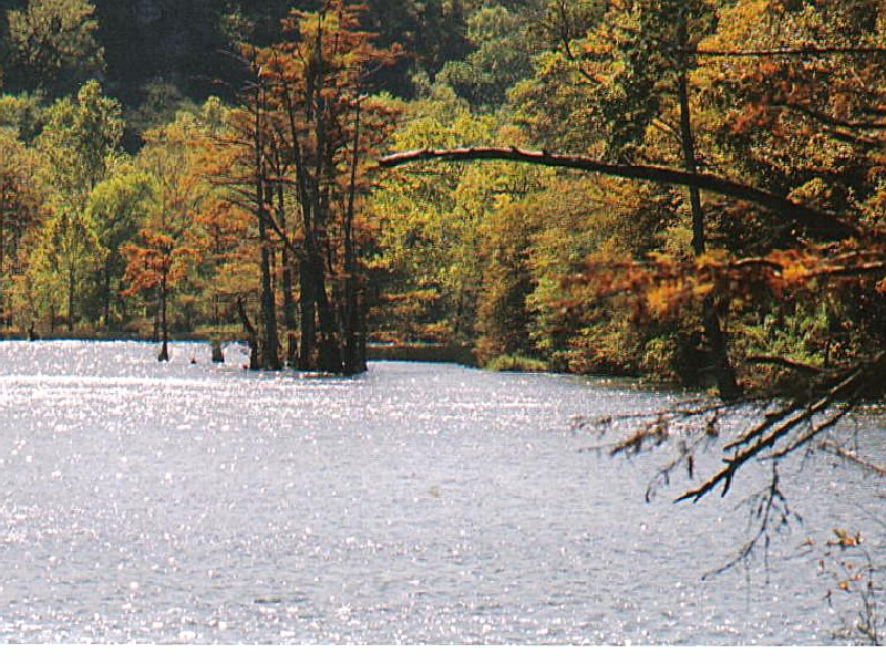 Beavers Bend State Park An Oklahoma State Park Located