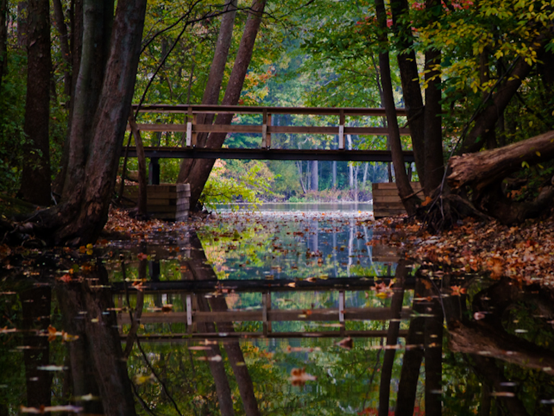 Chain O Lakes State Park An Indiana Park Located Near
